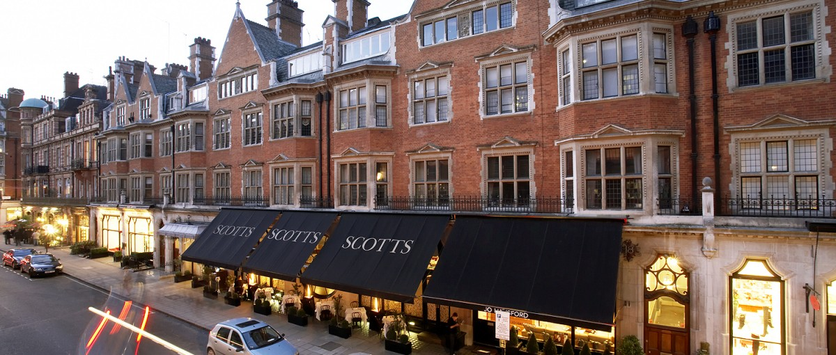 Scott's - Seafood restaurant in London