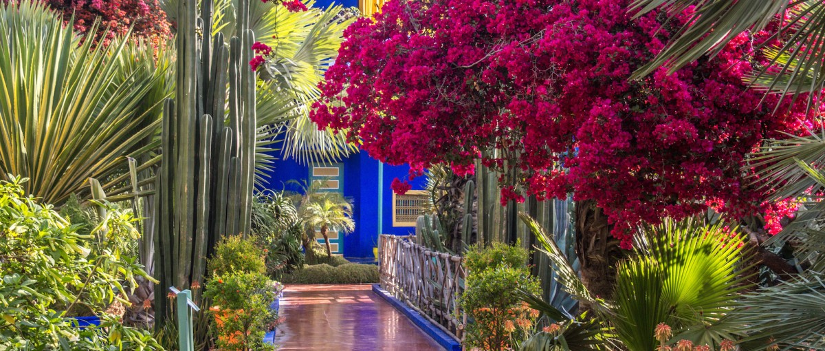 Majorelle Gardens - Sights in Marrakech