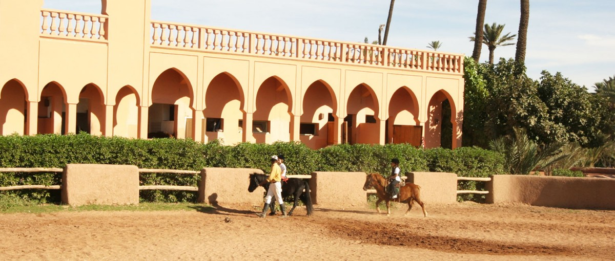 Club Equestre de Palmeraie - things to do in Marrakech