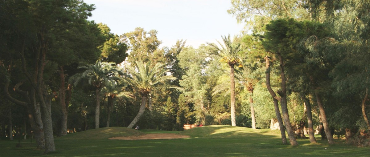 Palmeraie Golf Club - things to do in Marrakech