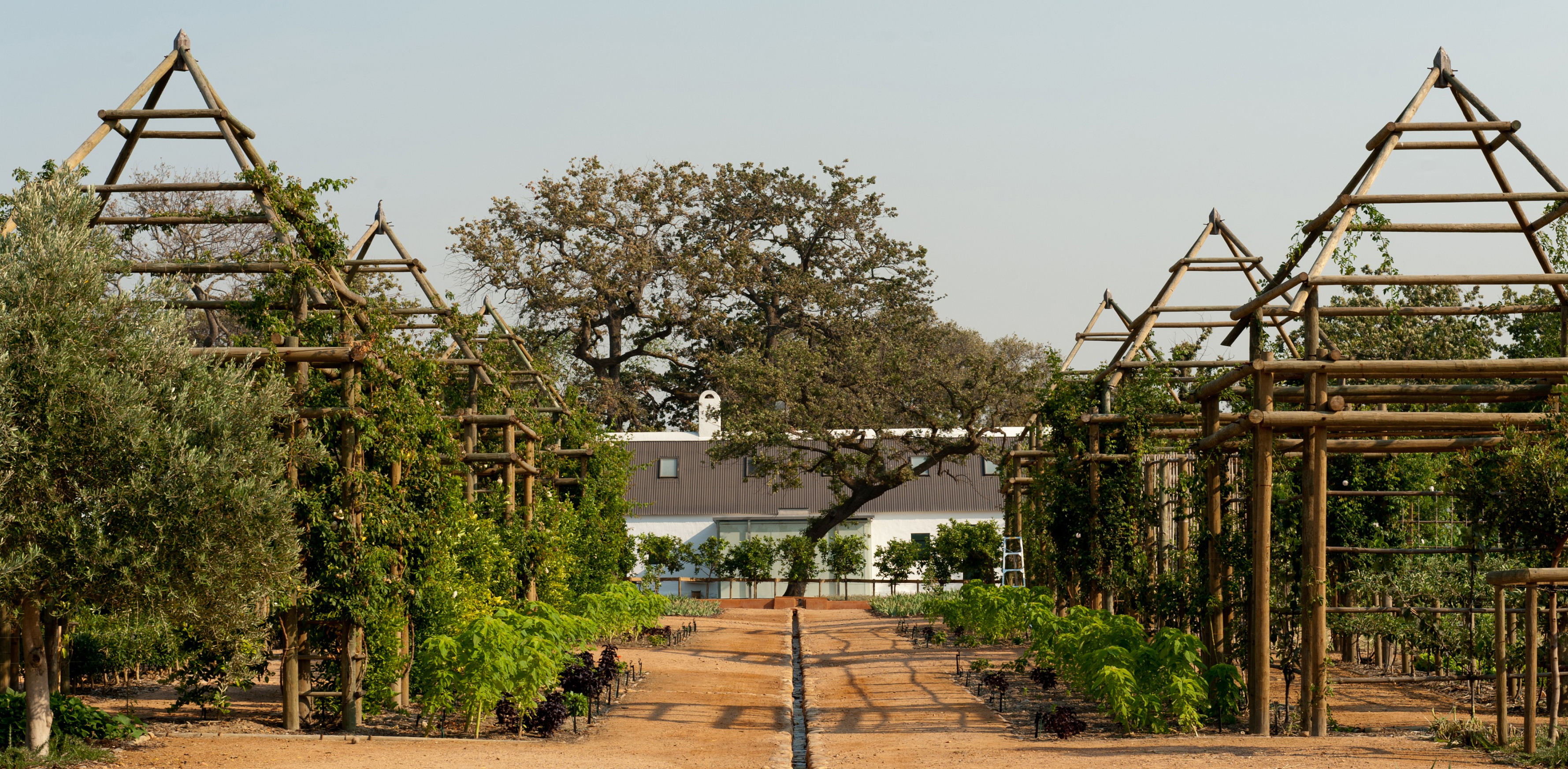 Babylonstoren One Of The Best Country Hotels In