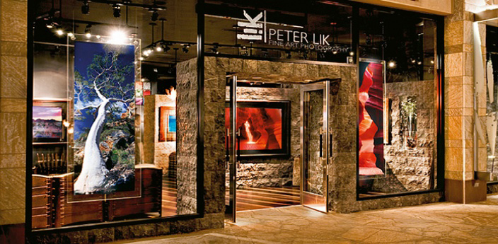 peter lik gallery one of the best art galleries shops in south